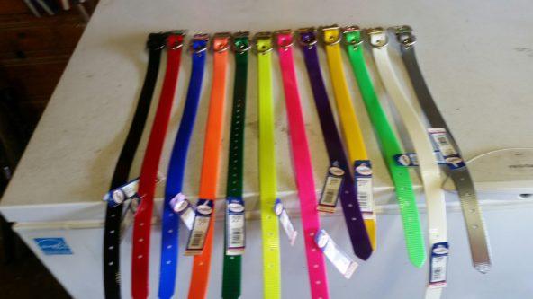 1 inch D Ring Dog Collar