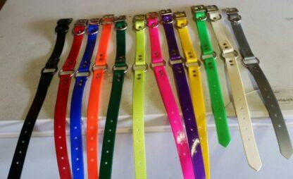 1 inch Dog Collar Ring in Center D Ring