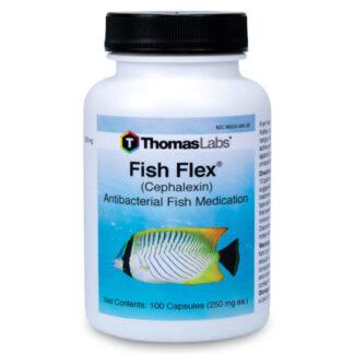 Fish Flex Antibiotic for Dogs