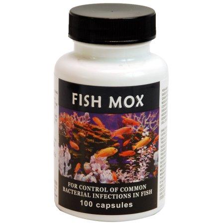 Fish Mox 250 mg Amoxicillin | | Eisenhut Dog & Kennel Supplies